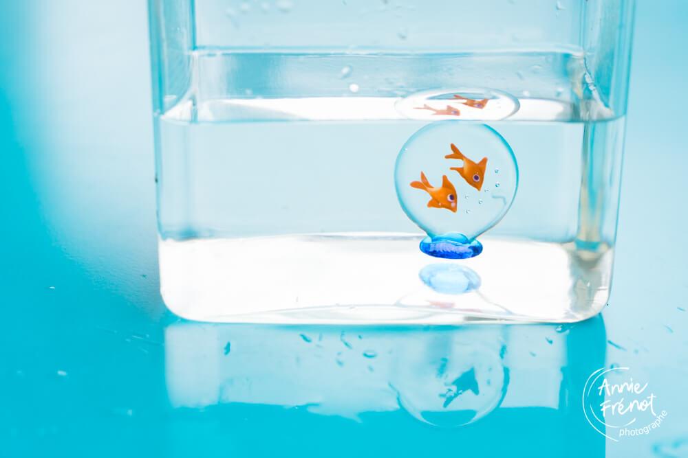 eau et poisson